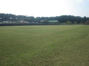 ルネス紅葉スポーツ柔整専門学校