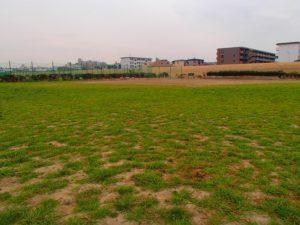 多摩川河川敷(古市場地区)